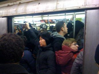 New Yorkers packed like rats