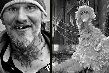 drugs, Big Bird, Mitt Romney, sesame street